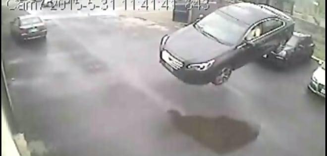 Videos de Cámaras de Seguridad en vivo