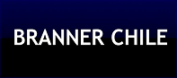 Branner Chile